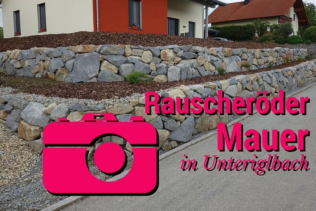 Mauer U-bach16_00